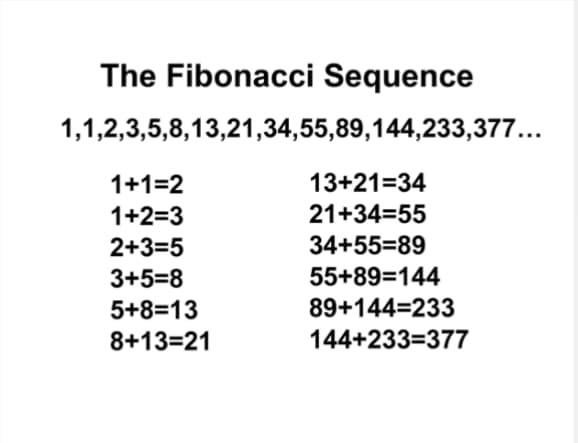 2B7F3159-C2D8-4C83-8486-CDC5FA2088C3.jpeg