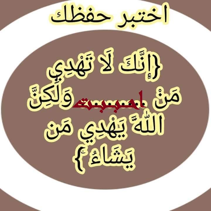 102991_ffae018bef6caf972bea728076a68df5.jpg